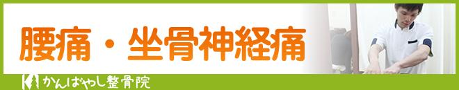 栃木県高根沢町かんばやし整骨院の腰痛・坐骨神経痛施術法